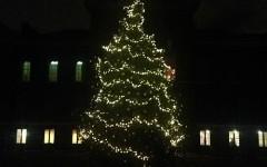 William III's Kensington Christmas