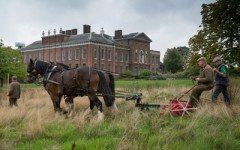 Hay-making at Kensington Palace