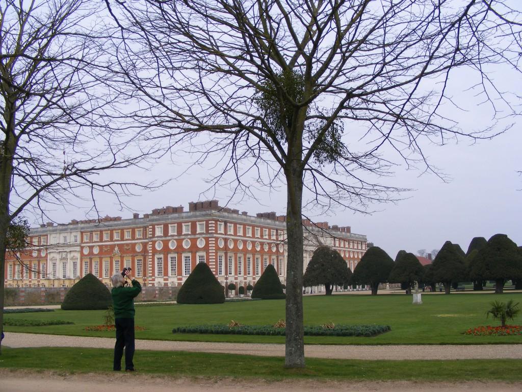 Hampton Court Palace Mistletoe Survey 2011