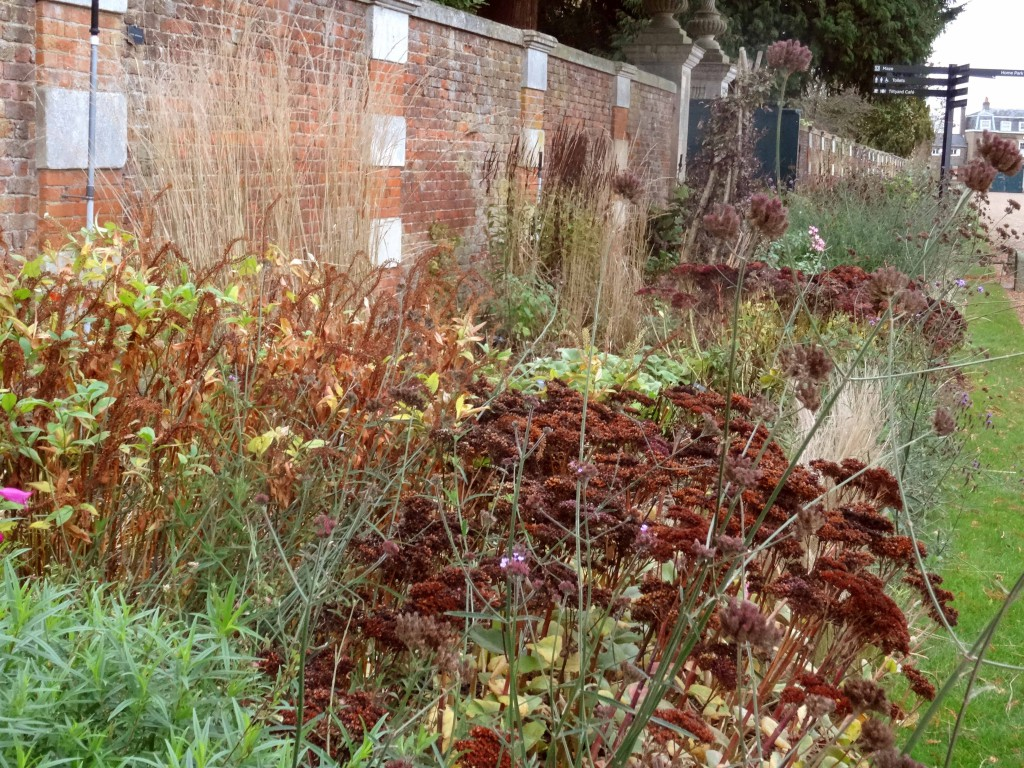 The herbaceous border at Hampton Court Palace in the Autumn