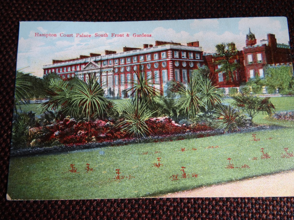 Old postcard of Tropical Bedding Scheme with interesting collection of weeds in the grass!