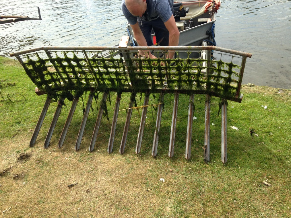 The weed rake which attaches to the front of the weed boat