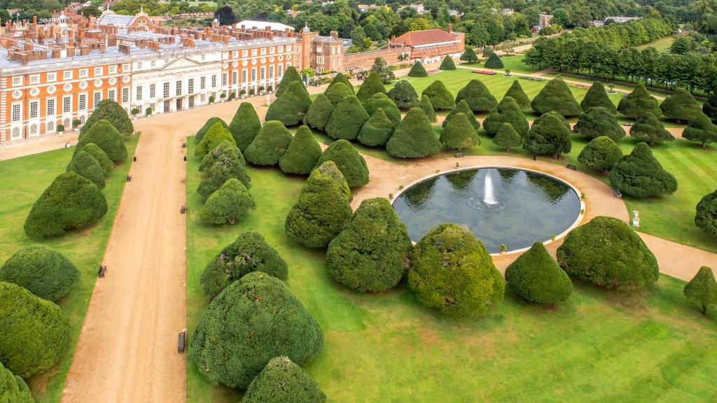 Mushroom Yews at Hampton Court