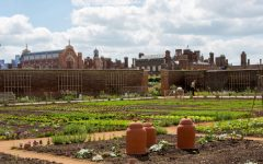 What's growing on in the kitchen garden this year?