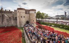 Public emotions: what can we learn from Tower Poppies?