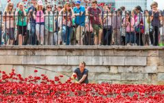 How do we know what the Tower Poppies meant to people?
