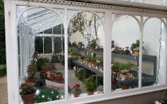 New life for the glasshouse at Hillsborough Castle