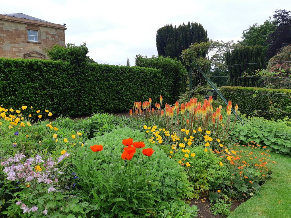 Flowers in bloom in the Granville Garden.