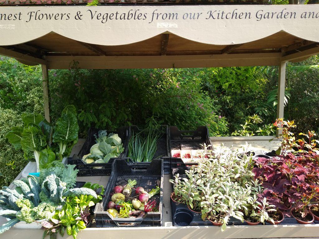 Vegetables being sold in the Kitchen Garden
